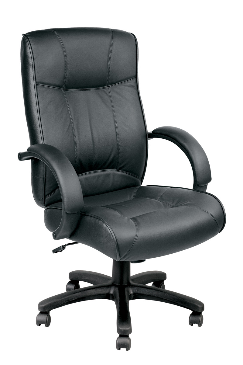 Awesome Eurotech Odyssey Executive Leather High Back Chair LE9406