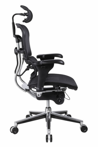Ergonomic Chair Lumbar Support