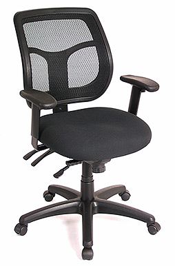 Raynor Apollo MT9450 Multi-function Ergonomic Task Chair